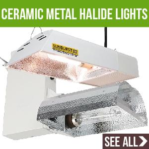 Ceramic Metal Halide Lights