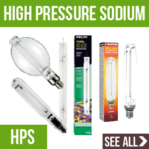 High Pressure Sodium Bulbs