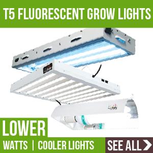 T5 Fluorescent Grow Lights