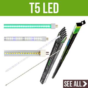 T5 LED Bulbs